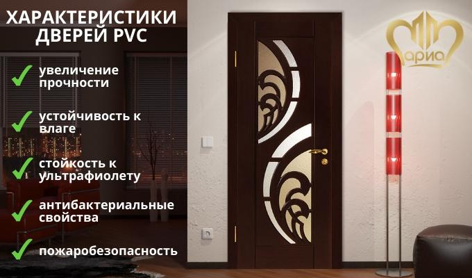 Характеристики дверей PVC
